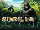 Автомат Gorilla в Вулкане Делюкс