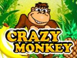 Crazy Monkey игровые автоматы на деньги