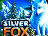 Silver Fox автоматы на деньги