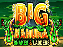 Онлайн автомат на деньги Большой Кахуна Змеи И Лестницы