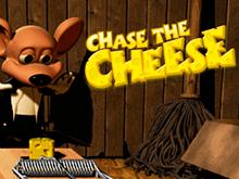 Преследуй Сыр – игровой автомат онлайн от Betsoft