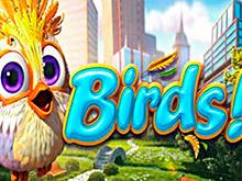 Птички!