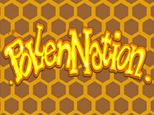 Виртуальный гэмблинг с Pollen Nation