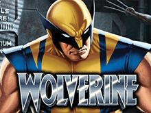 Играйте онлайн в автомат Wolverine клуба Вулкан